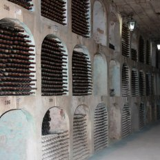 amazing-collection-wines