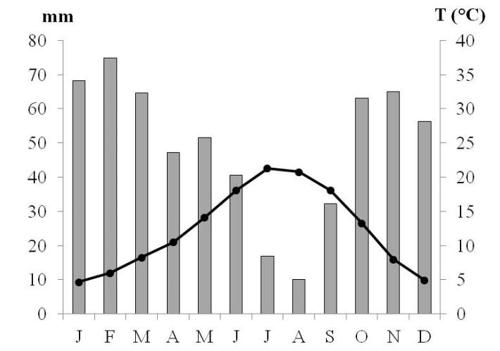 Precipitação do ano de 2012