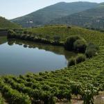 alto-douro-vinhateiro-patrimonio-mundial-27