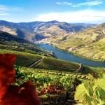 alto-douro-vinhateiro-patrimonio-mundial