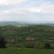 codru-landscape-3