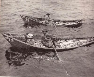 pesca-do-bacalhau-doris1