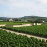 Borgonha - França