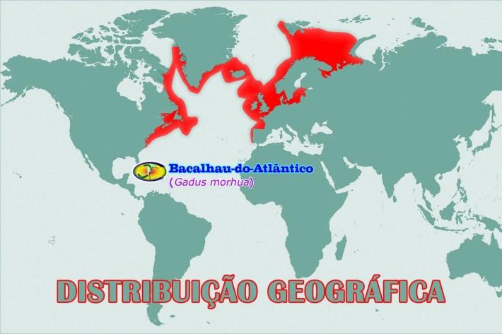 Mapa de distribuição de Bacalhau gadus morhua