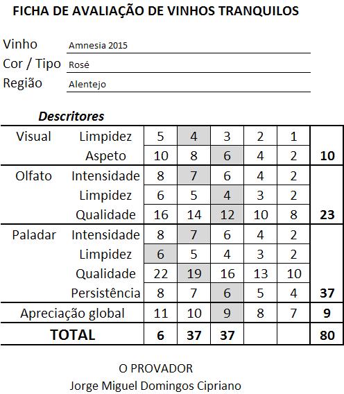ficha-apreciacao-amnesia-rose-2015