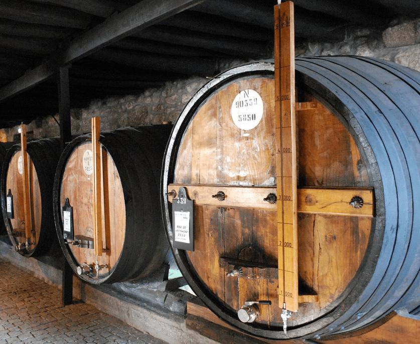 A Cultura Do Vinho