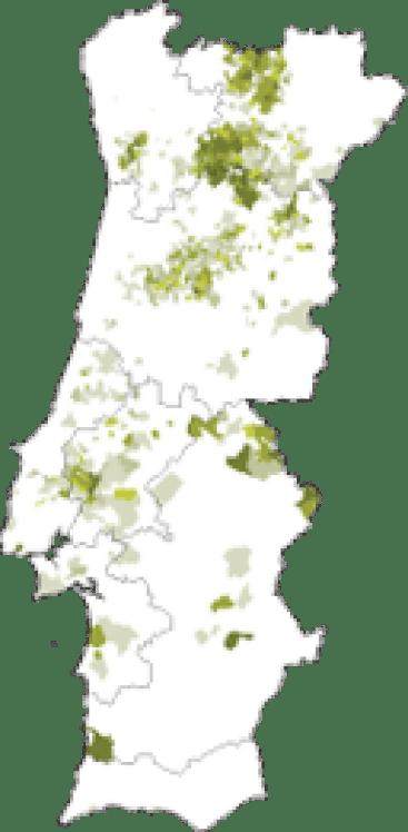 mapa-malvasia-fina