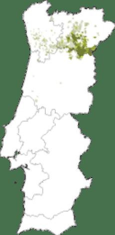 mapa-rabigato