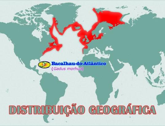 geografica