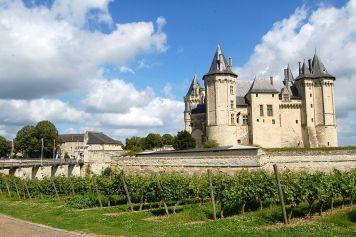 1024px-Vignes_du_château_de_Chinon