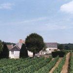 Domaine des Ouches; De Vignes En Vin®