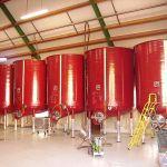 Os vinhos de Sancerre têm pouco contacto com madeira