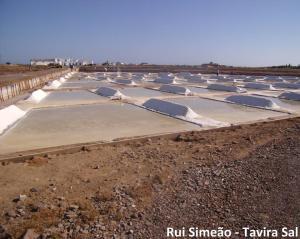 Salinhas de Rui Simeao 5