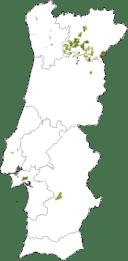 Mapa-Viosinho