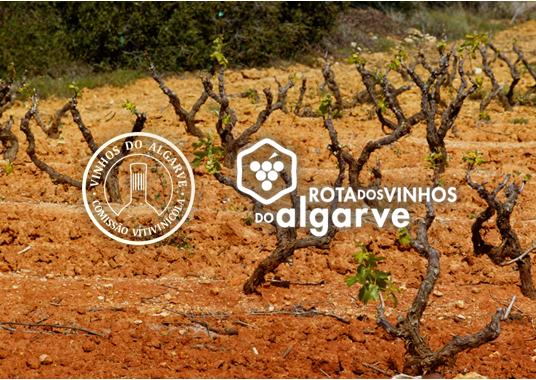 Capa Vinho do Algarve 4