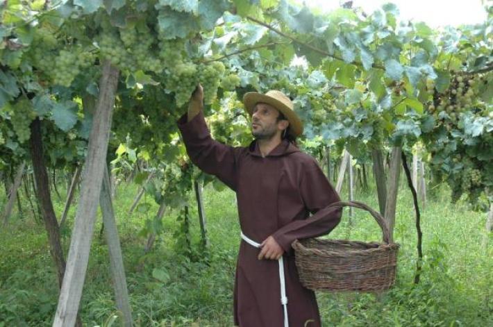 A Origem do Vinho de Missa ou Lacrima Christi 5
