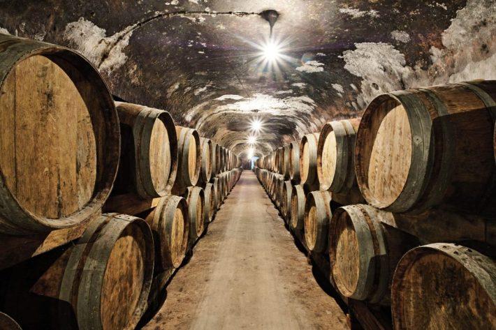 sa sergio azenha (Colaborador) - 13 marco 2017 - PORTUGAL, Agueda - Regiao da Bairrada - Caves Primavera, empresa vinicola - adega - pipas