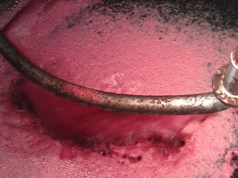 fermentação 6