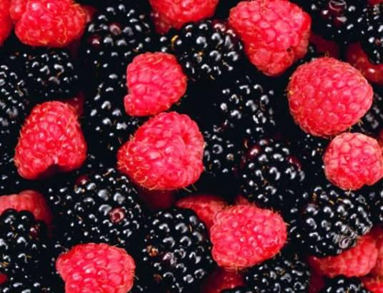 Capa frutos vermelhos pretos