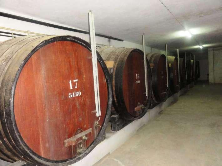 Vinhos com Denominação de Origem Controlada de Torres Vedras3