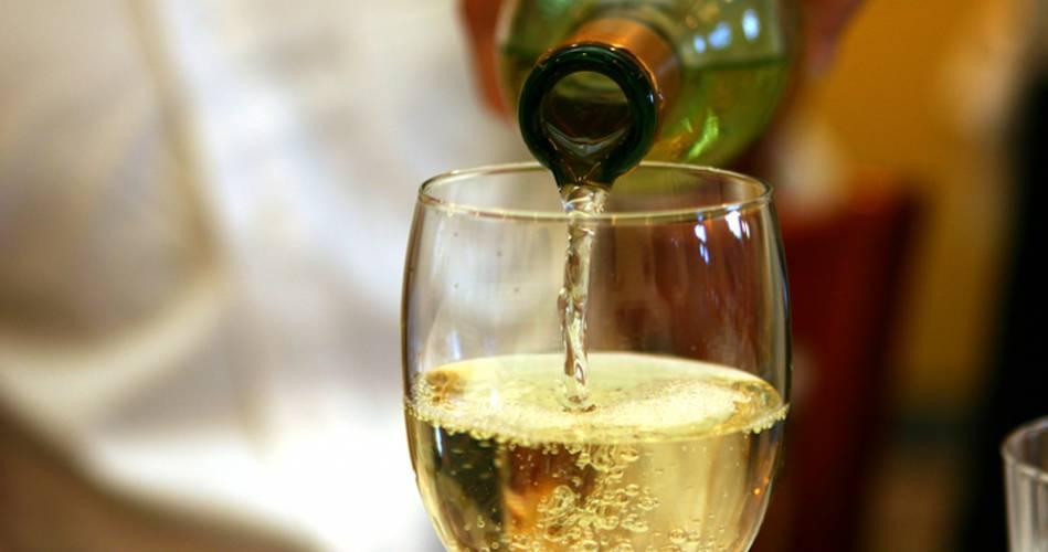 Os vinhos de Denominação de Origem da Sub Região da Vidigueira