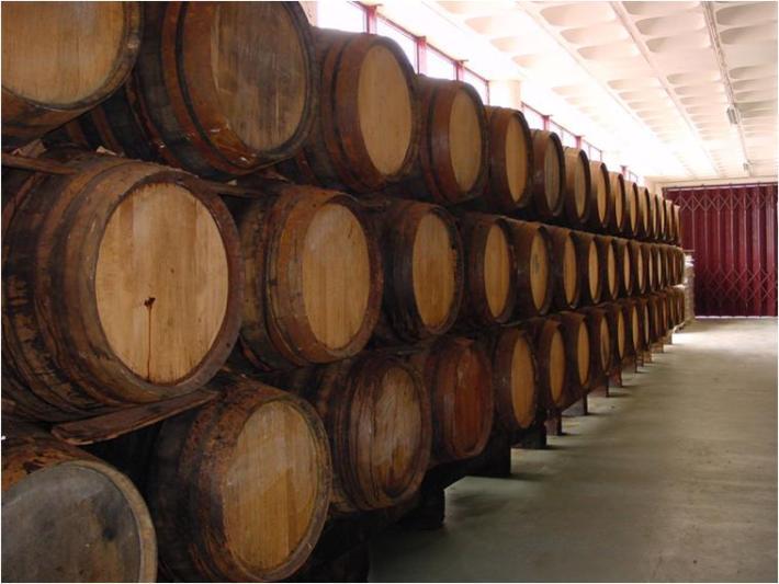 A Bela História do Vinho da Madeira 8