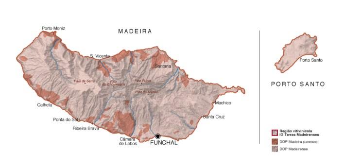A Bela História do Vinho da Madeira 5