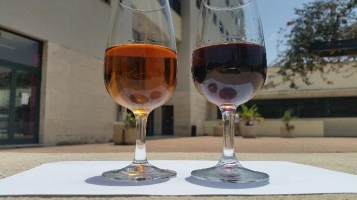 A Bela História do Vinho da Madeira 9