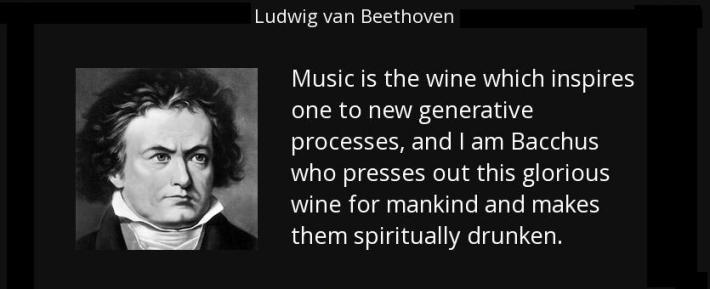 Relação harmoniosa entre vinhos e música clássica 12