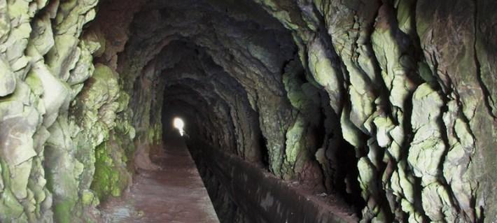 Região do Vinho da Madeira e como se produz 10
