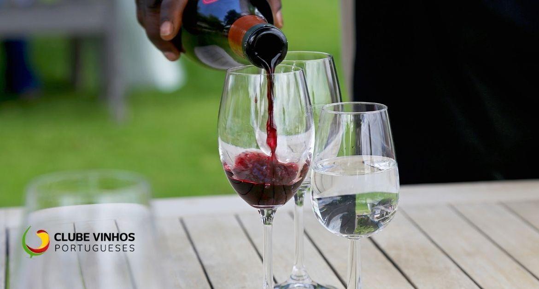 Consumir Vinho faz bem à saúde?
