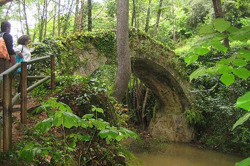 Riera d'Arbúcies i Jardí del Roquer 3 - Diumenge, 20 de maig de 2012