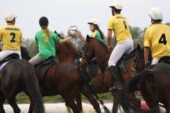 horseball2