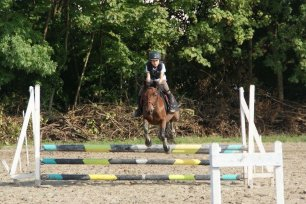 Poney saut d'obstacle
