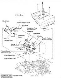 Engine Cleaning Diy Outdoor Cleaning Wiring Diagram ~ Odicis