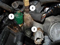 3 Coolant Temperature Sensors?  ClubLexus  Lexus Forum Discussion
