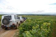 Bourgogne-2013-60