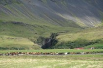Islande-12-006_DXO