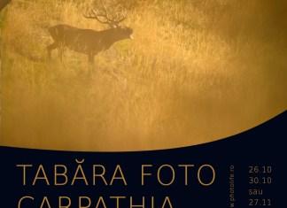 Tabara foto de natura gratuita - Tabara Carpathia (concurs foto)