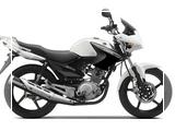 2014-Yamaha-YBR125-EU-Competition-White-Studio-002_tn
