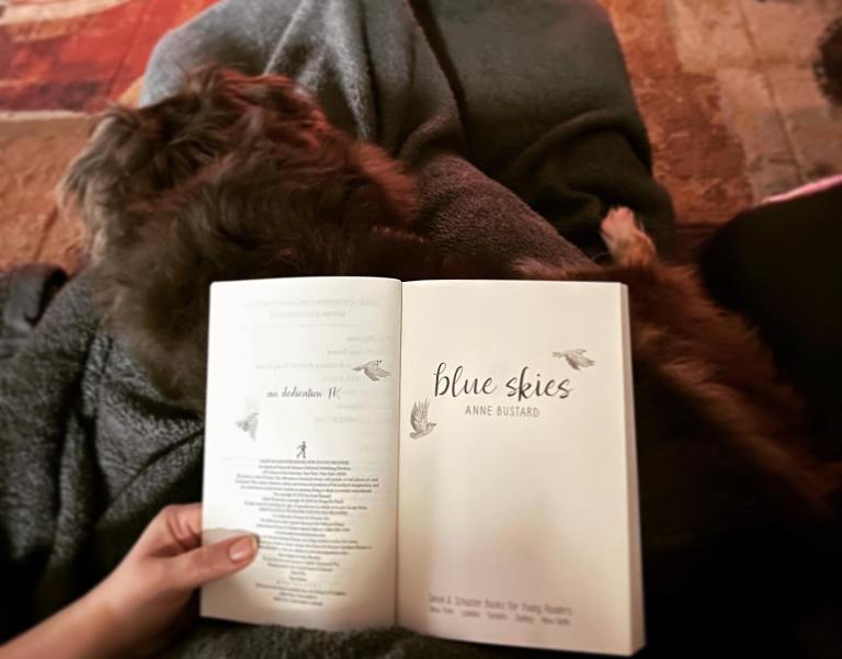 Bookstagram: photo of woman reading blue skies - she is sitting, covered by a soft blanket, with a furry cat on her lap, and the book is open to the title page.