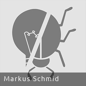 Markus L. Schmid