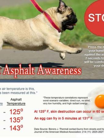 dogs hot asphalt chart