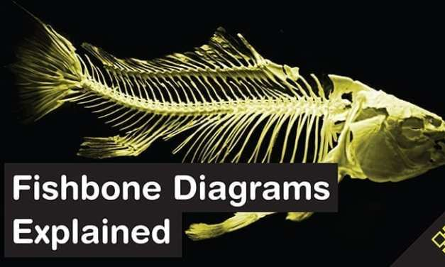 Fishbone Diagrams: The Investigative Tool Explained