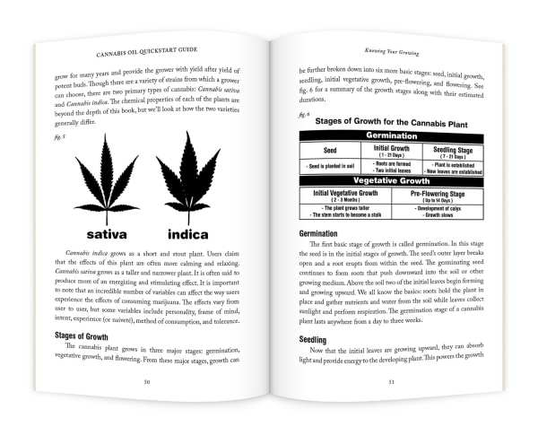 CannabisOil_pages2