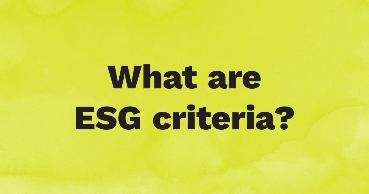 What are ESG criteria?