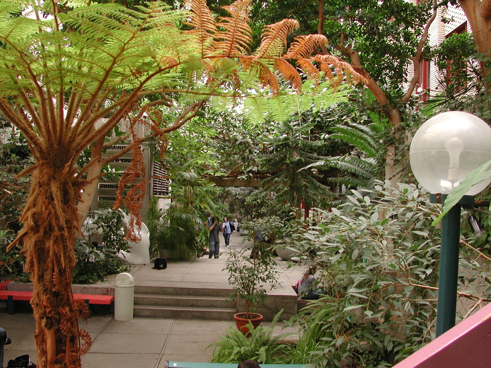 Jardin intrieur  Salle de rception en location  Collge de Maisonneuve