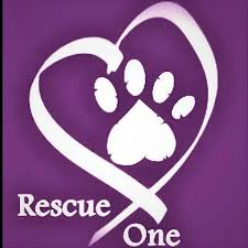 CMBG3 Supports Rescue One Organization