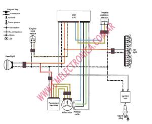 Suzuki Cdi Wiring Diagram  Wiring Diagram And Schematics