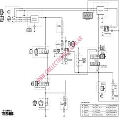 1993 Ezgo Marathon Wiring Diagram 30 Amp Plug 2003 Yamaha G22 Golf Cart Auto